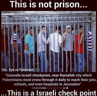 "This is not prison... ""Qalandia Israeli checkpoint near Ramallah city which Palestinians must ..."