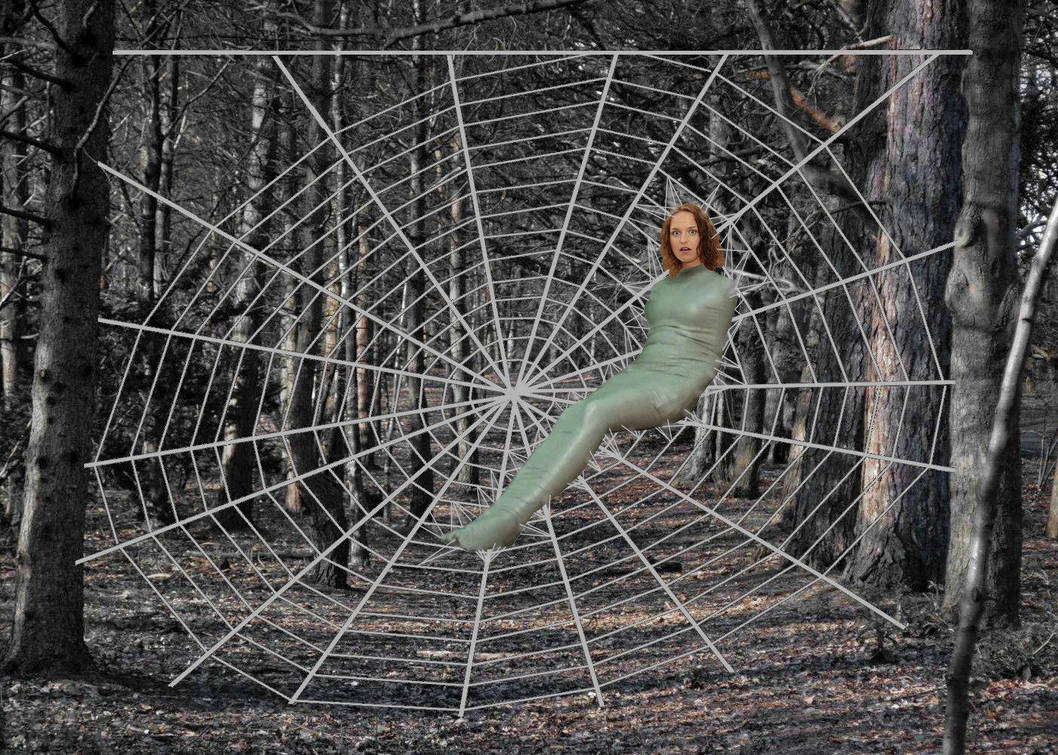 First try at a spider web by paulm131 on DeviantArt