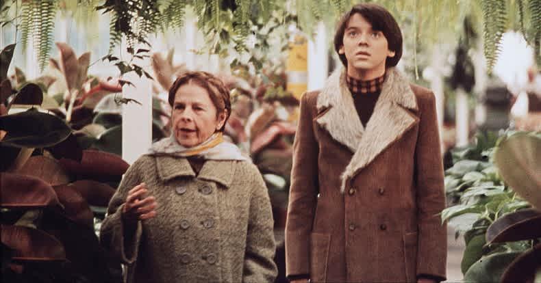 Harold and Maude (1971) | Love Is Strange: 25 Twisted ...