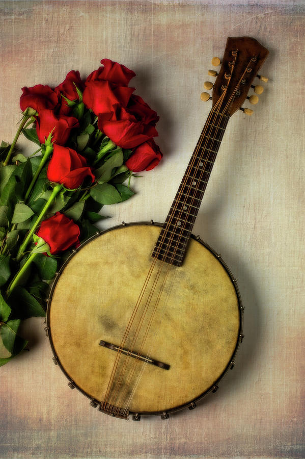 Old Banjo And Roses Photograph by Garry Gay