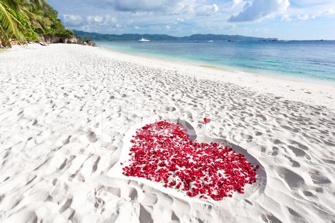 Heart of Roses Petals on Sea Sand Beach Stock Photos - FreeImages.com