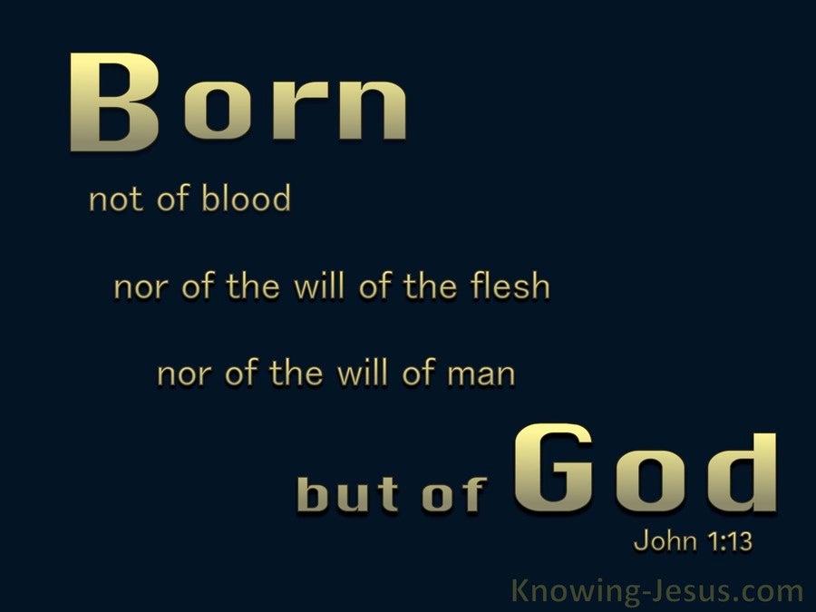 John 1:13 Not Born of Man's Will But Of God (black)