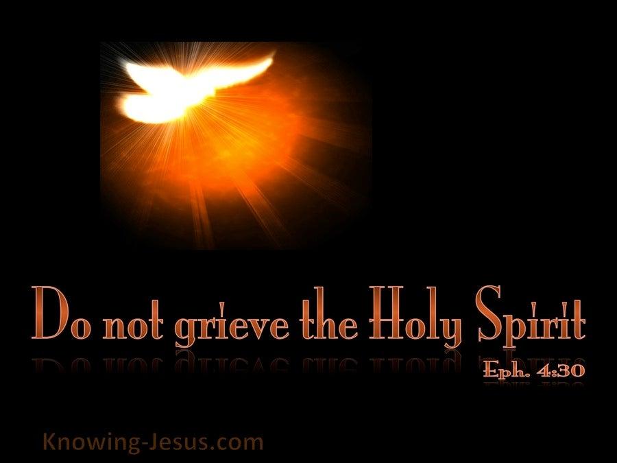 Ephesians 4:30 Do Not Grieve The Spirit (black)