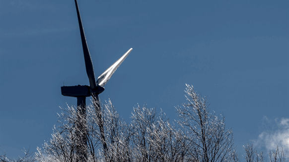 Texas Grid Woes Go Beyond Frozen Wind Turbines | Rigzone