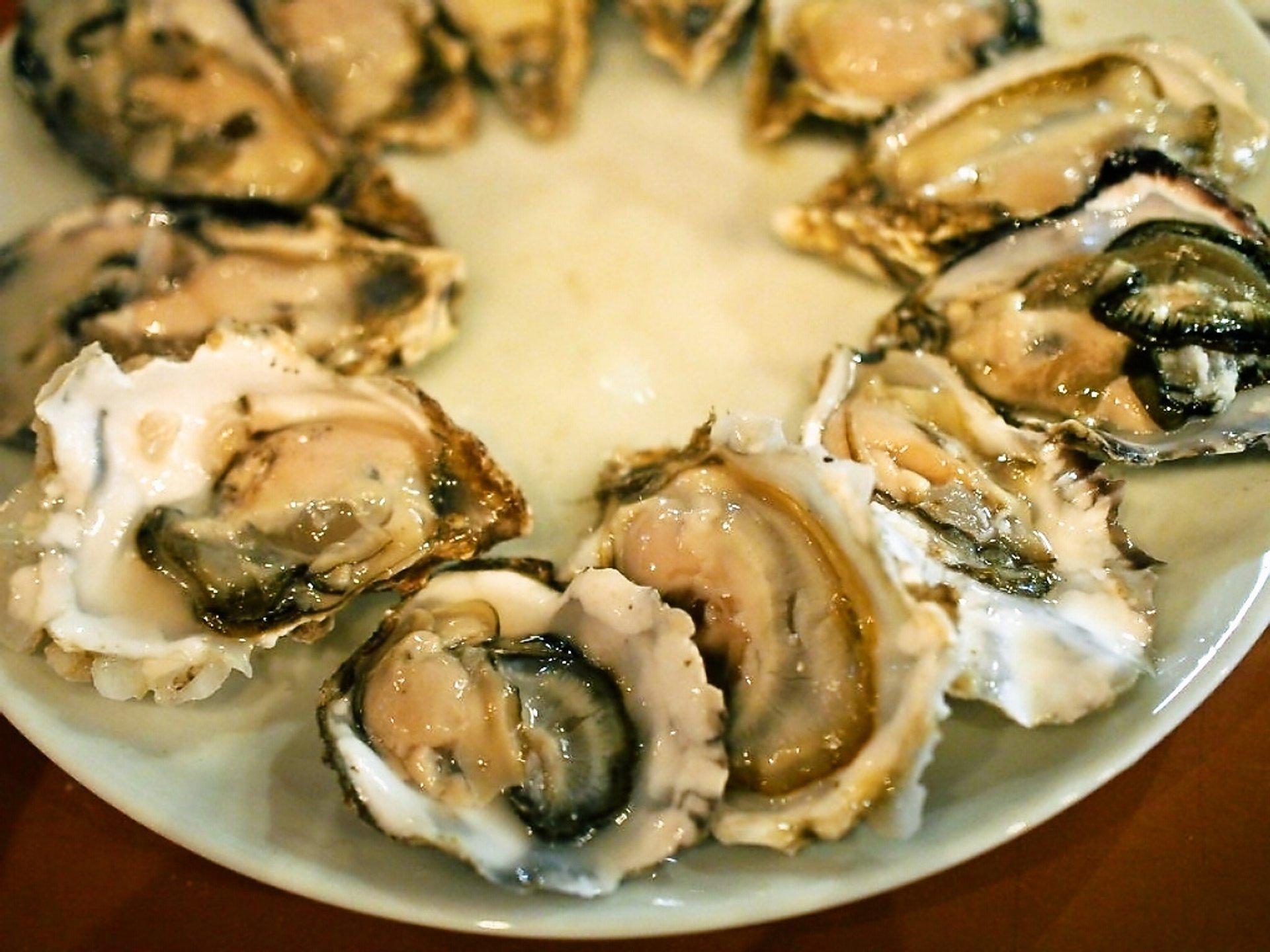 Oysters Harvest in Phuket Season in Thailand 2020 - Roveme