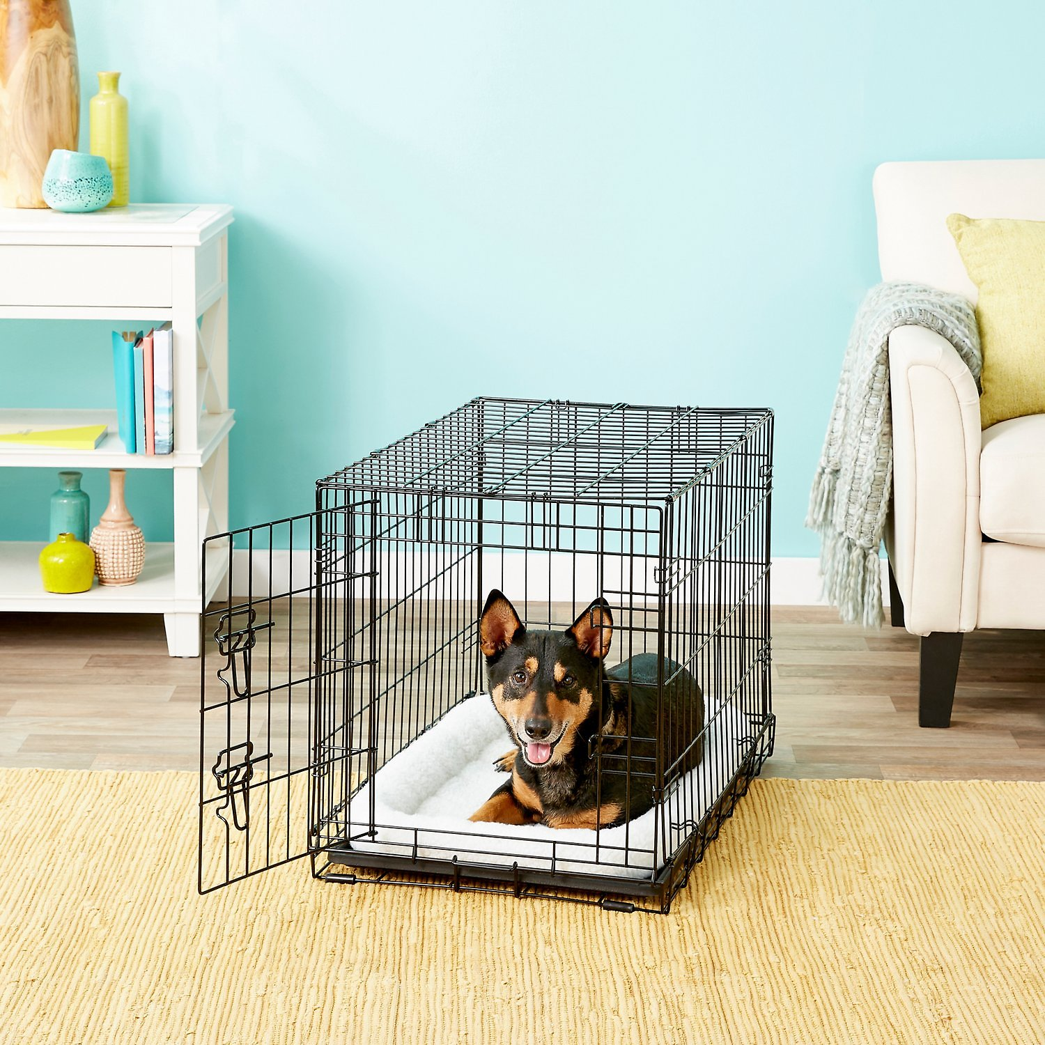 FRISCO Fold & Carry Single Door Collapsible Wire Dog Crate ...