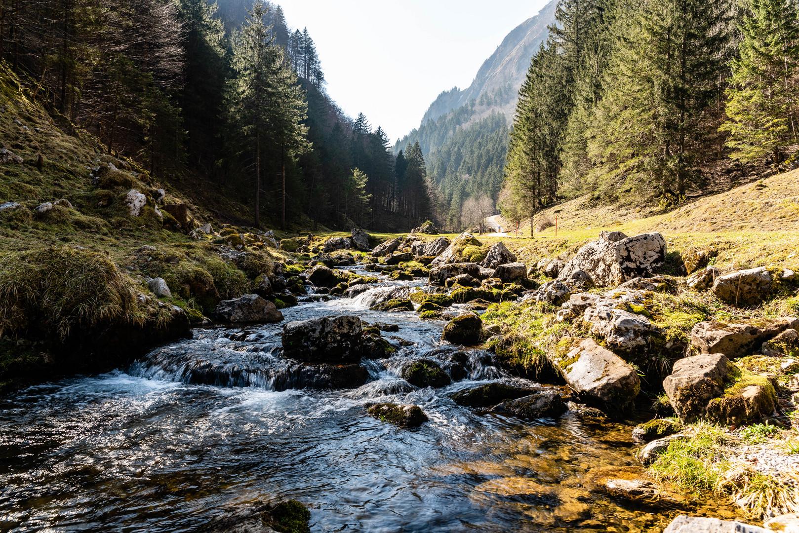 Bachlauf Foto & Bild   landschaft, alpstein, natur Bilder ...