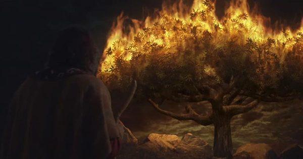 O profeta semelhante a Moisés: Jesus ou David Owuor?