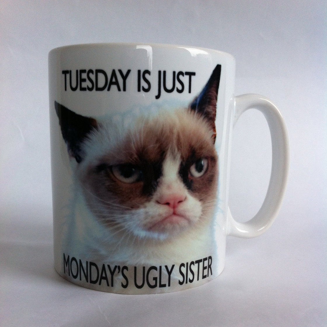 Grumpy cat tuesday is just monday's ugly sister mugs