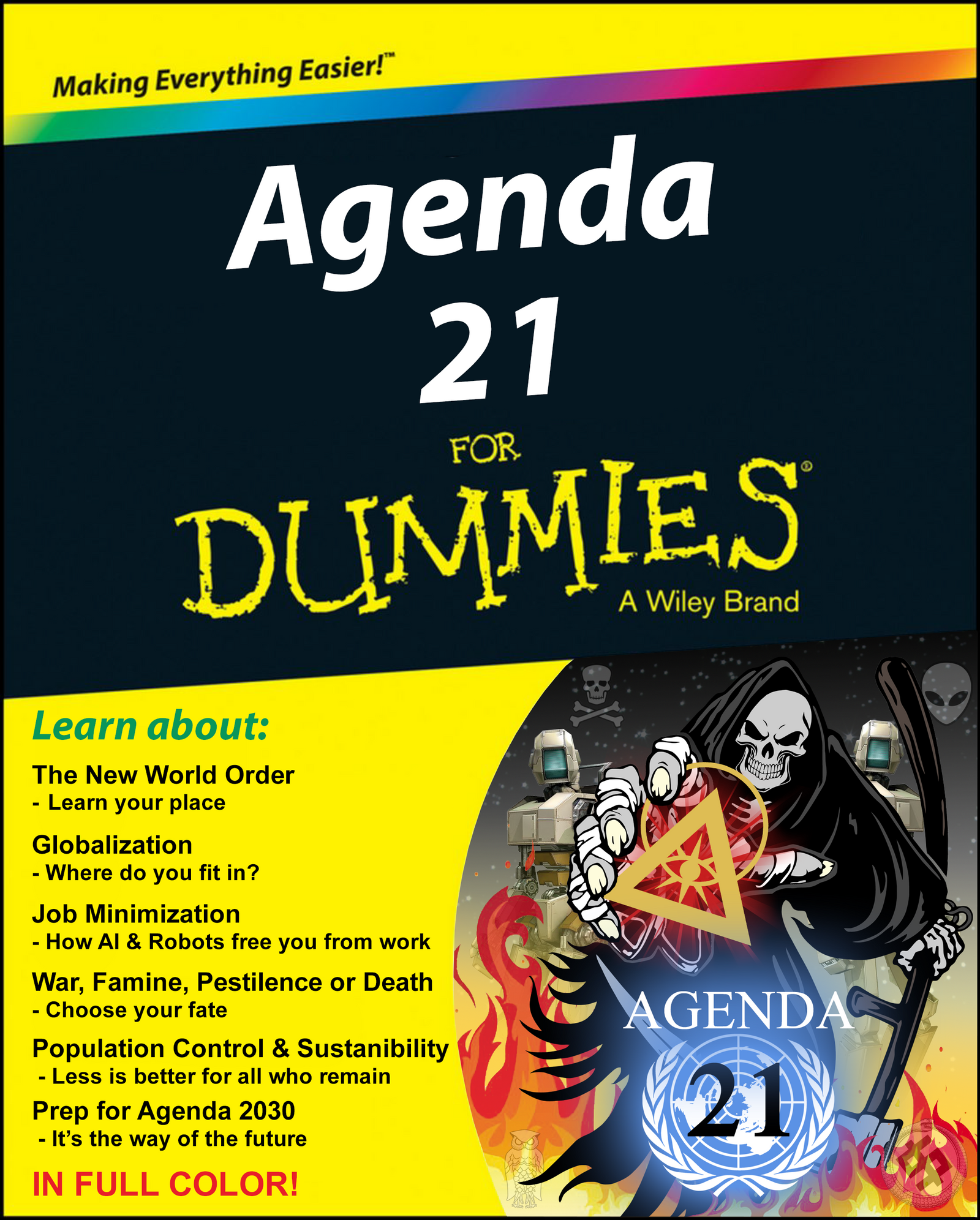 Agenda 21 For Dummies Book Cover by topher147 on DeviantArt