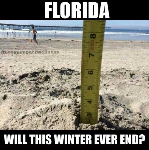 Funny: Stop the madness #flwinter | impactwellness