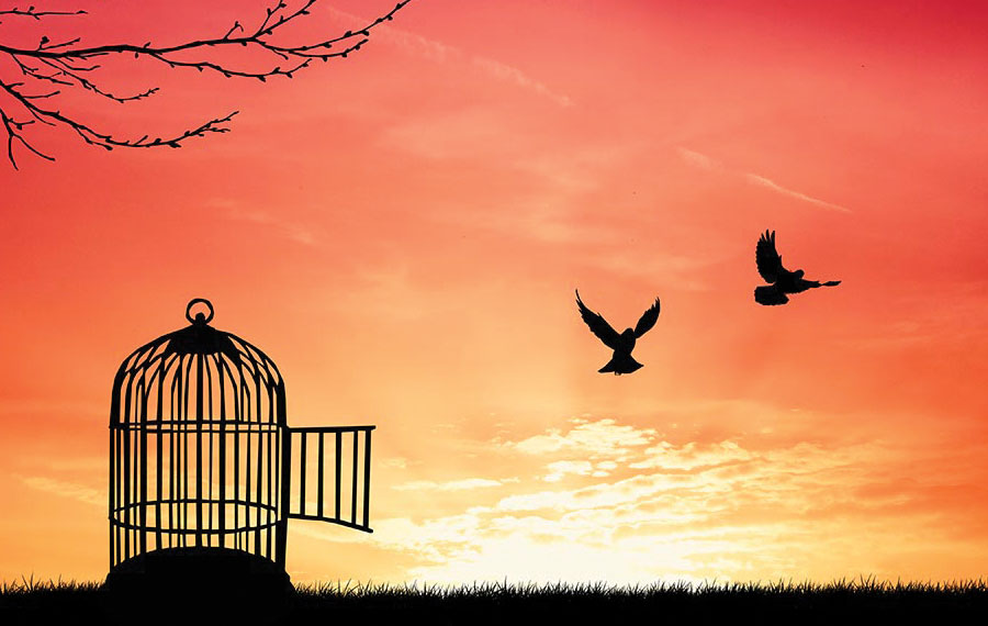 When Freedom Gets Personal | Jewish Journal