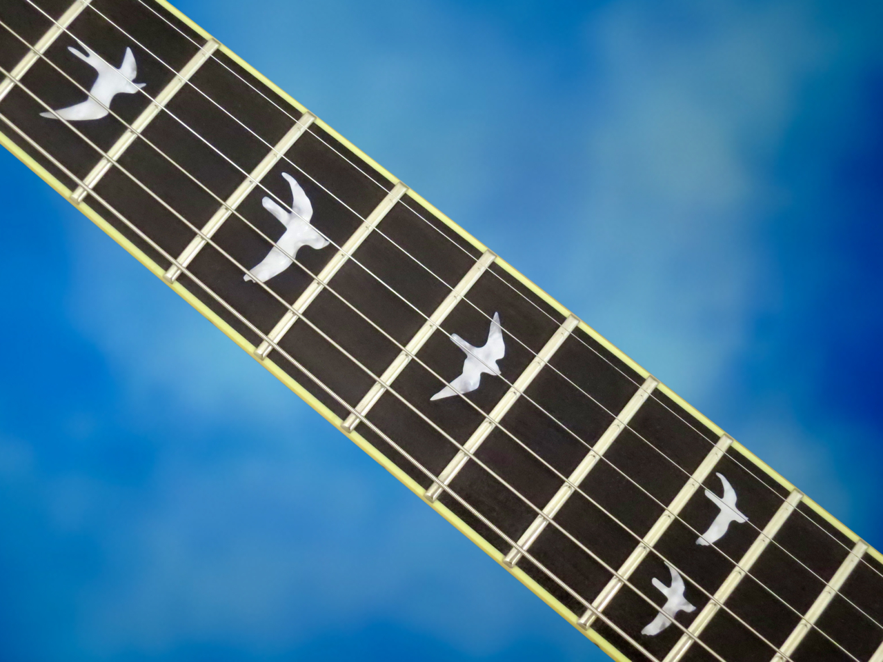 PRS have come up with a variation of their bird-inlays for the ...