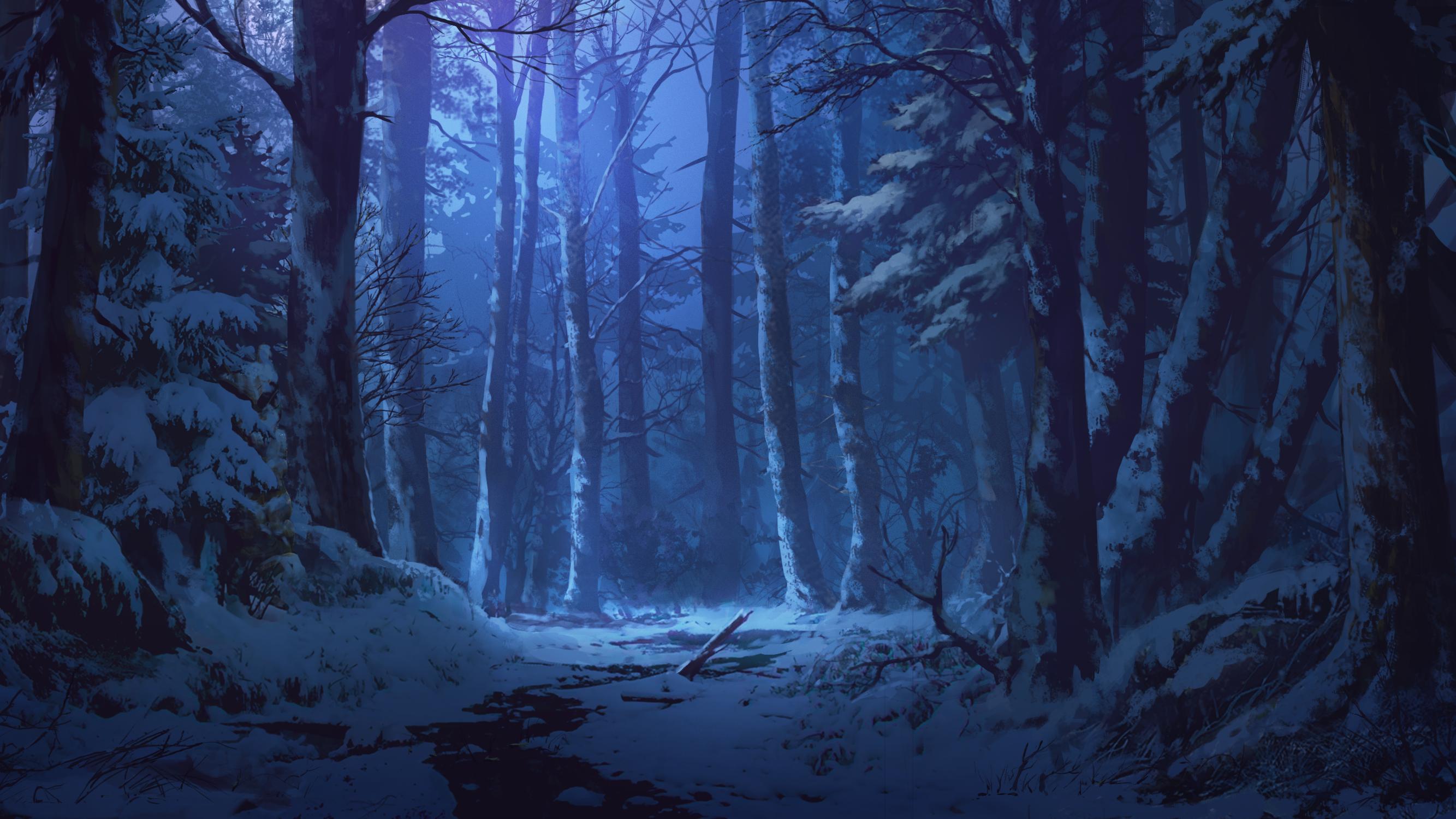 blue dao dao dark forest night nobody original scenic snow ...