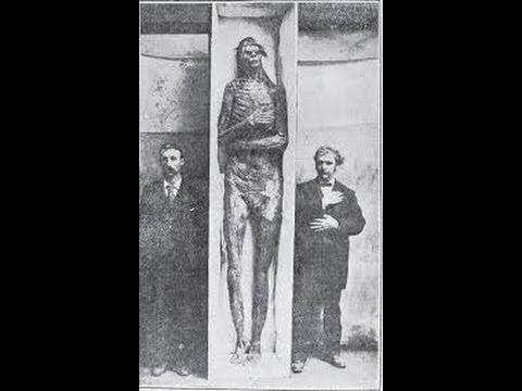 Giants, nephilim, Anunnaki - Google+