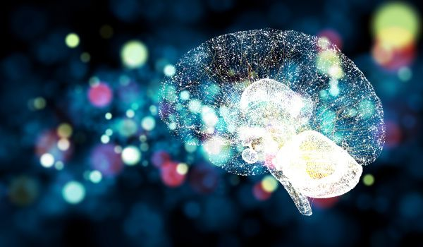 Artificial brains may need sleep for proper functioning, says study…
