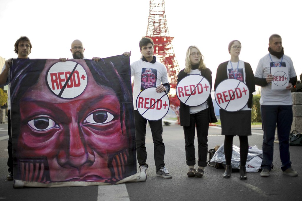 No REDD+ protest, Paris | Friends of the Earth ...