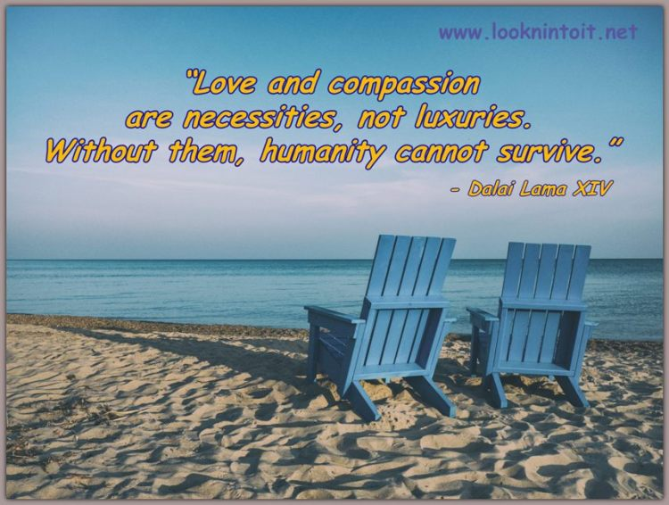 Compassion Article and Quotes - Funny Stuff, Inspirational ...