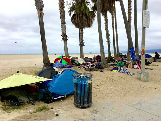 Venice Beach Homeless - Picture of Venice Beach, Los Angeles - TripAdvisor