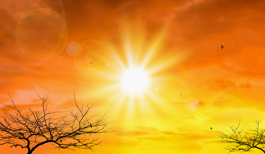 Heat Wave Of Extreme Sun And Sky Background Hot Weather With Global Warming Concept Temperature ...