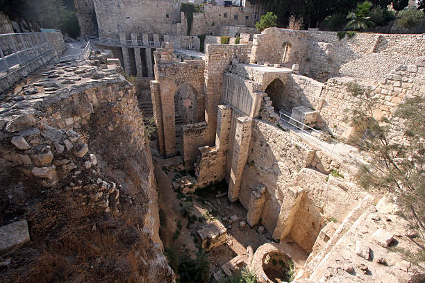 Royalty Free Pool Of Bethesda Pictures, Images and Stock Photos - iStock
