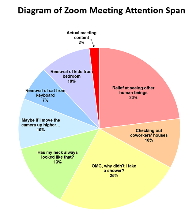 Burlington Resident's Zoom Meeting Meme Goes Viral | Live ...