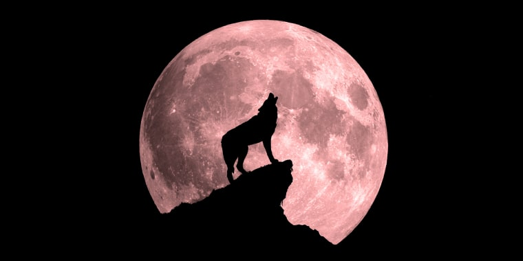 Get Ready For A 'Wolf Moon Eclipse' To Kick-Off 'Year of the Rat' As Earth Gets Closest To The Sun…