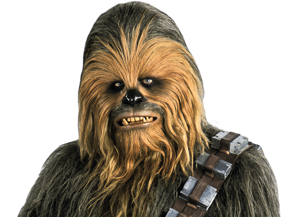 Is A Wookie Life Partner Your Best Relationship Option ...