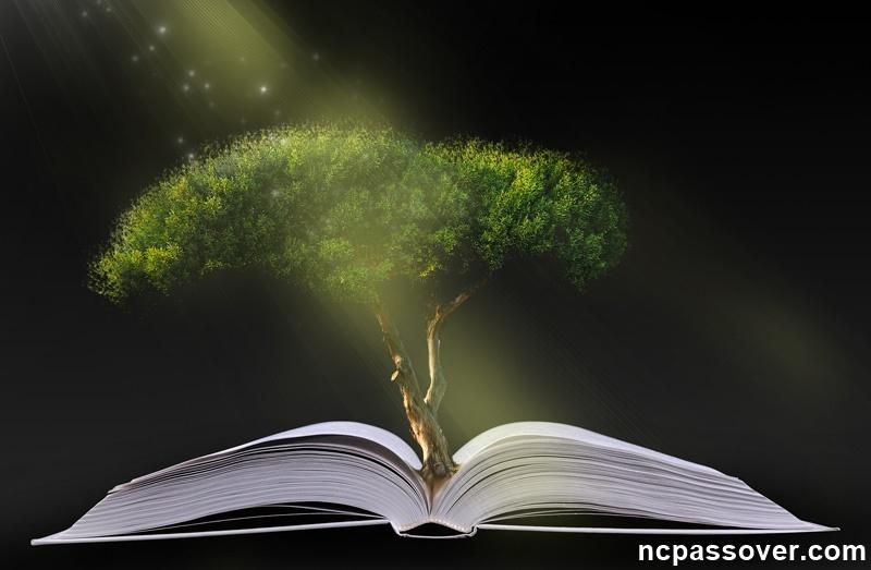 The secret of the Garden of Eden, the new covenant ...