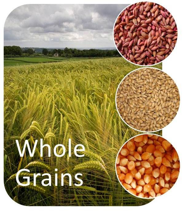 ... grains come from or what foods are considered to be whole grains any