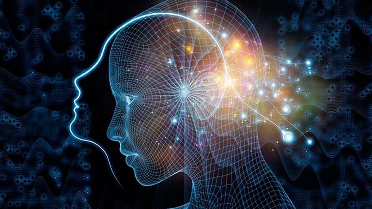 ¿Cuál es el verdadero origen de la conciencia humana?