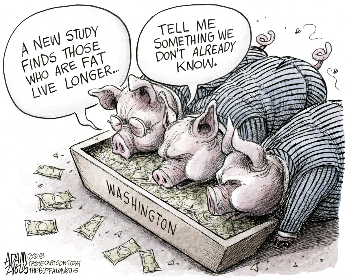 Money Talks (especially to politicians) - Tales From The ...
