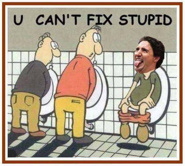"""Ezra Levant: Trudeau's plan to monitor """"truth"""" in election ..."""