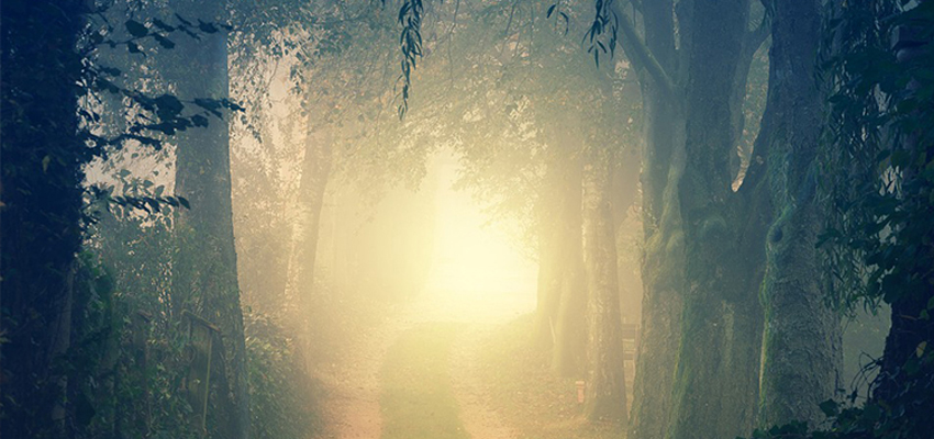 Spirit Guides - Psychic Services | Psychic Truth UK ...