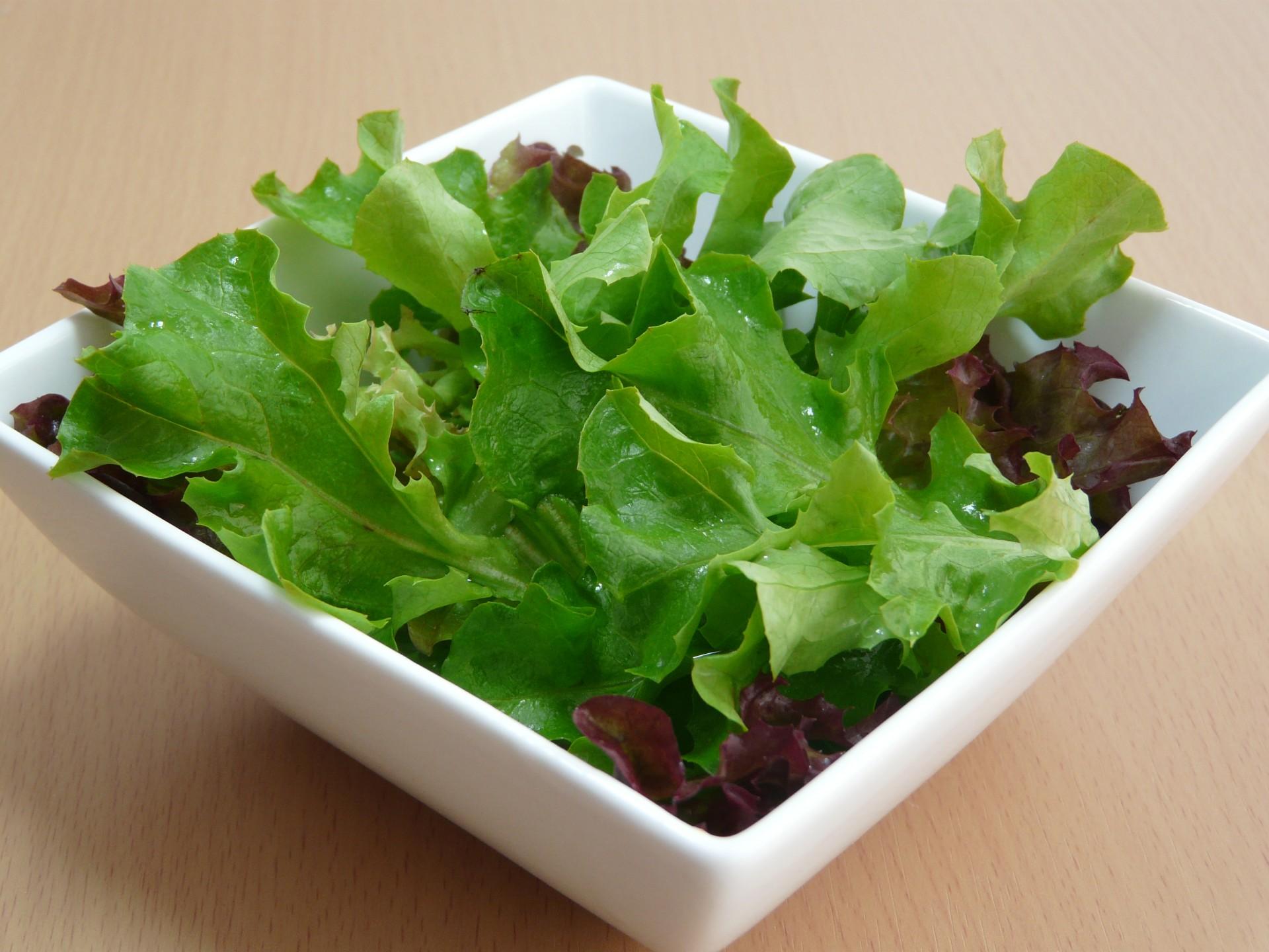 Salad Free Stock Photo - Public Domain Pictures