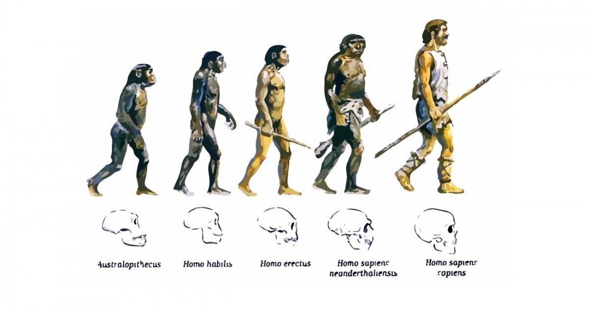La teoría de la evolución biológica