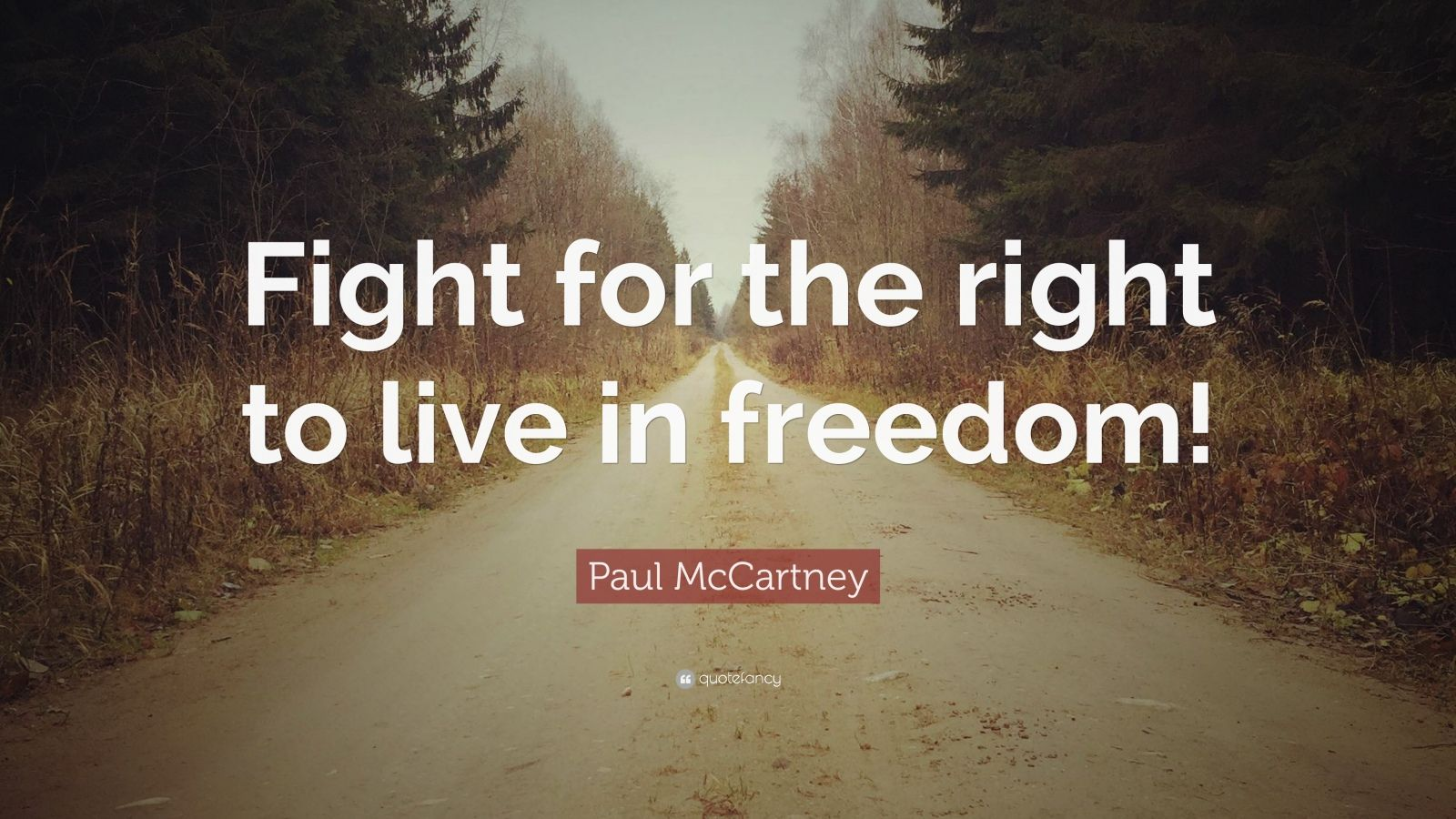 "Paul McCartney Quote: ""Fight for the right to live in ..."