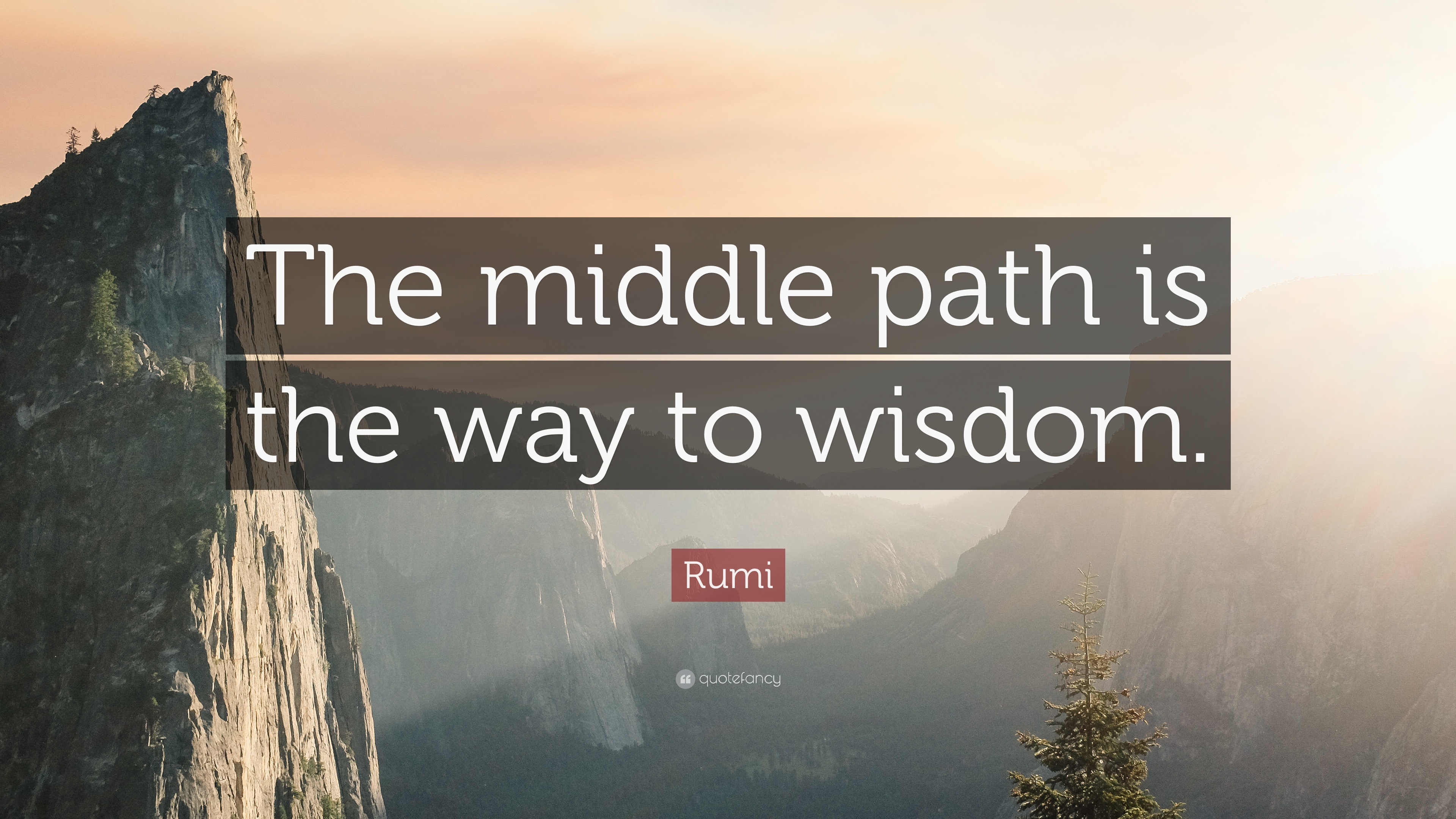"""Rumi Quote: """"The middle path is the way to wisdom."""" (12 ..."""