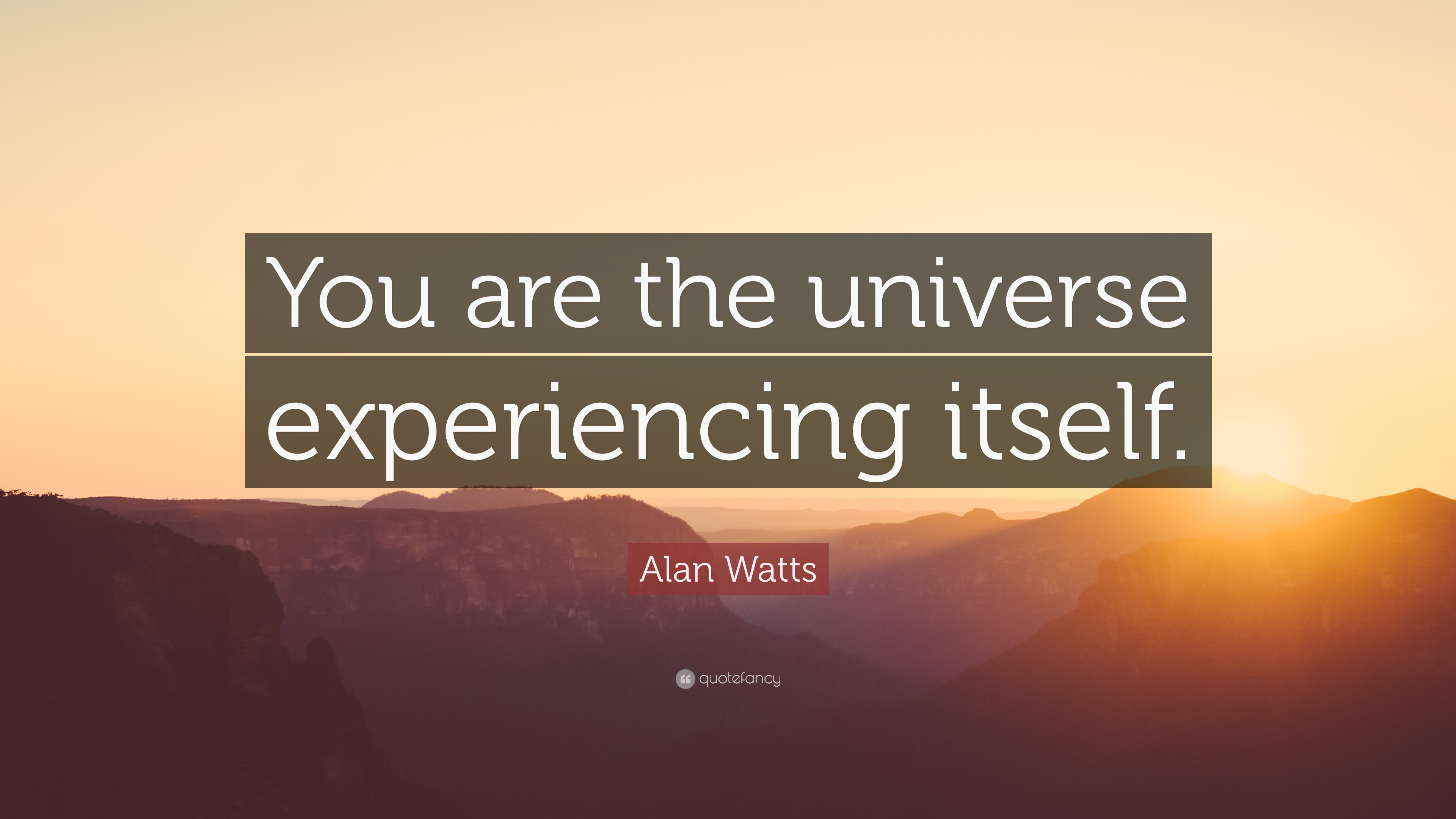 """Alan Watts Quote: """"You are the universe experiencing itself."""" (18 wallpapers) - Quotefancy"""