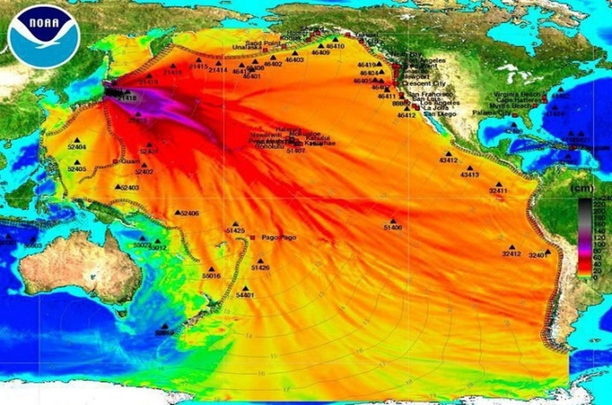 Greenpeace Claims Fukushima Water Release Could Change Human DNA thumbnail