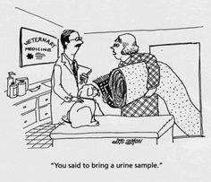 1000+ images about Veterinary Comics on Pinterest | Comic ...