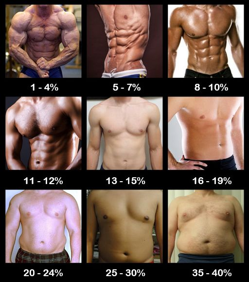 Body fat percentage, how much is yours? | Men's Weight ...