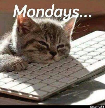 174 best images about Day/Monday on Pinterest | Mondays ...
