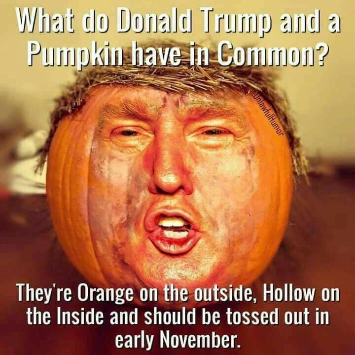 Best 25+ Trump pumpkin ideas on Pinterest | Donald trump pumpkin trumpkin, Donald trump puns and ...