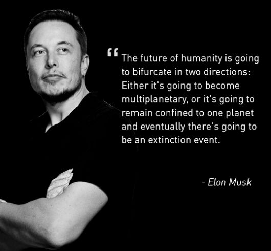 59 best images about Elon Musk on Pinterest   Infographic ...