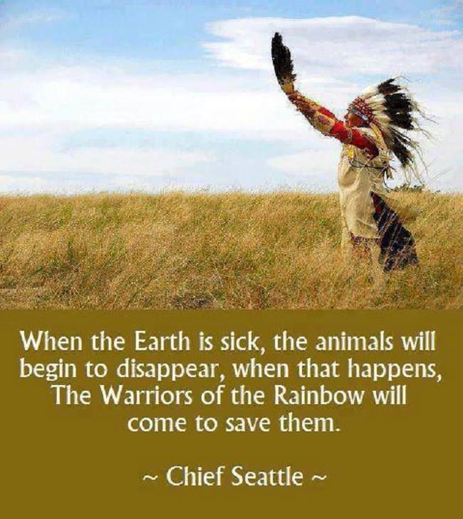 ... Rainbow Warriors on Pinterest | Warriors, The rainbow and Rumi quotes