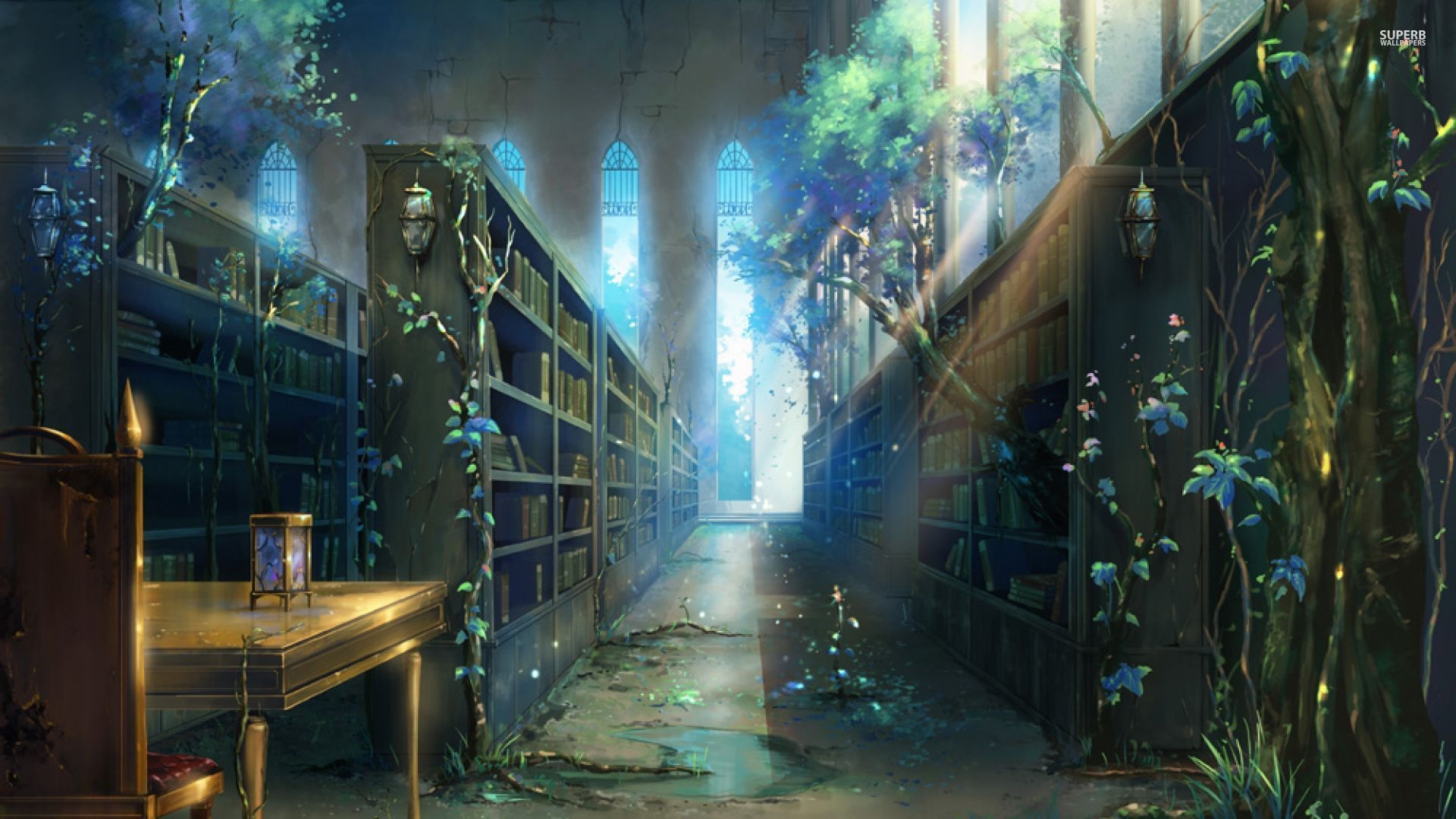 fantasy library - Google Search | Great Libraries ...