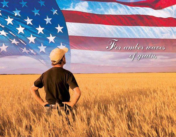 America the Beautiful   Patriotic songs lyrics