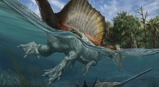 The First Truly Semiaquatic Dinosaur, Spinosaurus Aegyptiacus
