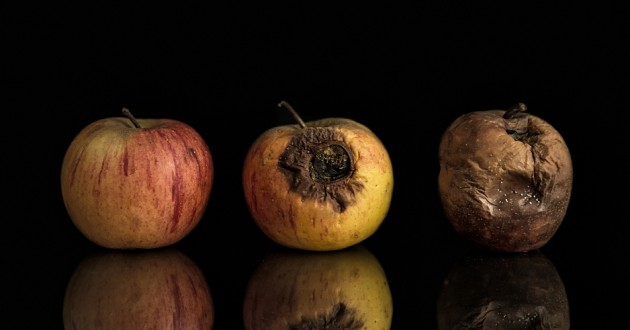 Rotten Apples: MacSpy, MacRansom Bring Malware-as-a ...
